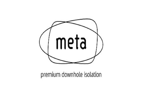 Meta Downhole